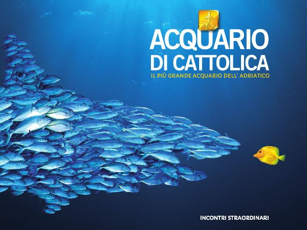 The Aquarium in CATTOLICA
